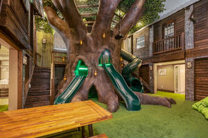 1233-Castle-Pines-Ct-Tree-house-scaled